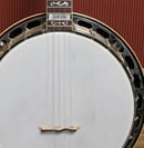 Aurora Model Banjo Back